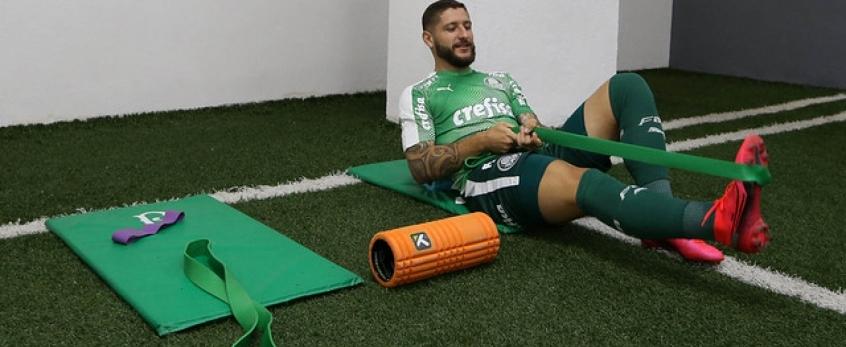 Ze Rafael Palmeiras